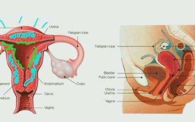 Sonia Grover Talks Menstruation for International Women's Day